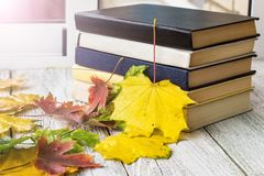 Old books in autumn leaves on wooden background. Toned royalty free stock photos