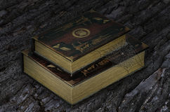 Old books on the bark tree's background Royalty Free Stock Photography
