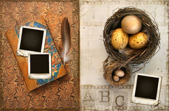 Old books with bird nests on grunge Royalty Free Stock Images