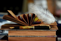 Old books and feather. Old books, sheets, feather and fountain pen Royalty Free Stock Images