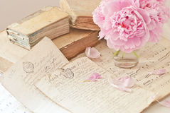 Old books and flowers. Old books, documents and flower Royalty Free Stock Images