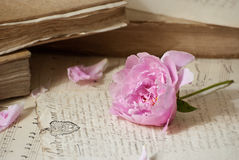 Old books and flowers. Old books, documents and flower Stock Image