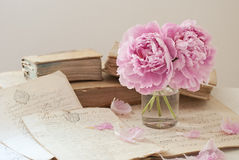 Old books and flowers. Old books, documents and flower Royalty Free Stock Photo