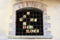 Old books in lattice window with sprouted plants Royalty Free Stock Photography