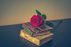 Old books and rose Stock Photos