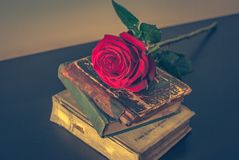 Old books and rose Royalty Free Stock Image