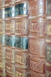 Old books on a shelf Royalty Free Stock Image