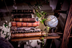 Old books on a shelf royalty free stock images