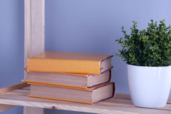 Old books on a shelf. Royalty Free Stock Photo