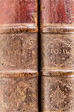 Old books spines royalty free stock images