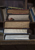 5 old books Stock Photography