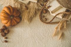Old books and vintage straw bag on white warm plaid with pumpkin, physalis, acorns, walnut. Autumn books and reading. autumn mood stock photos