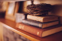 Old Books Wood Shelf Birds Nest Warm Tones Royalty Free Stock Photography