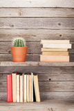 Old books on a wooden shelf Royalty Free Stock Image