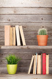 Old books on a wooden shelf. And plants. With copy space Royalty Free Stock Image