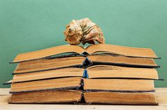 Old books and seashell. Old books on a wooden shelf and seashell stock photography