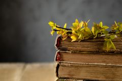 Old books on a wooden table. Branches of yellow leaves on the books royalty free stock photos