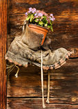 Old Boot with Flowerpot, Switzerland Stock Photo