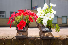 Old boots as flower pots Stock Photography