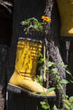 Old boots converted in flowerpots Stock Images