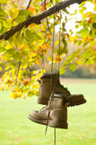 Old boots in the fall. Old worn boots hanging on a tree in an autumn forest Royalty Free Stock Photo
