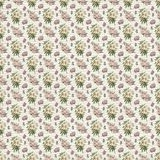 Old botanic floral pattern wallpaper Royalty Free Stock Photos