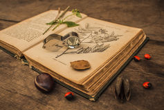 Old botanical book Stock Image