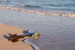 Old bottle lay on beach with sea plant and wave move in Royalty Free Stock Image