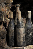 Old bottles in a cellar. Covered with dust and cobwebs Stock Photo
