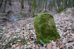 Old boundary stone Stock Photos