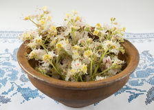Old bowl with flowers chestnuts Stock Photo