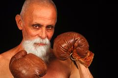 Old Boxer  Royalty Free Stock Photos