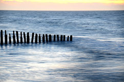 Old breakwaters. Old wooden breakwaters on tne Baltic Sea royalty free stock images