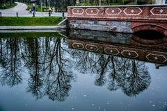 Old brick bridge, Latvia. Old red brick bridge of Kuldiga, Latvia. Bridge and trees are reflecting in the water Stock Photos