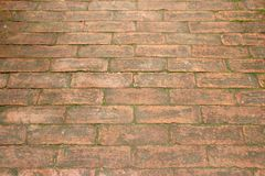Old brick. Stock Images