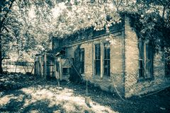Old Vine Covered Building. Old brick building covered with vines in Infrared Stock Image