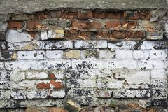 Old brick fence. Ruined walls. Backgrounds stock images
