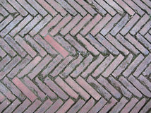 Old brick footpath background Royalty Free Stock Photo