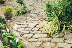 Old brick footpath in garden Royalty Free Stock Photos