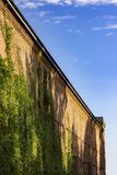 Old brick house wall with green ivy under blue sky royalty free stock image