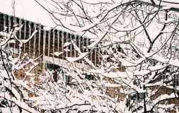 Old brick house in the winter garden Royalty Free Stock Photography