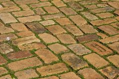 Old brick pavement Stock Photos