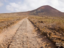 Old brick road through the desert Stock Images