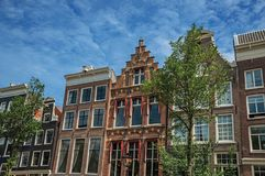 Old brick semi-detached buildings facade with tree and sunny blue sky in Amsterdam. The city is famous for its huge cultural activity, graceful canals and Royalty Free Stock Photos