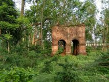 An old brick structure in a forest Royalty Free Stock Images