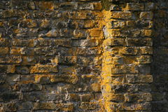 Old brick in sunset 1. This is traditional material in ireland, mostly used by english - former, wall buildings etc Stock Photos