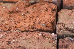 Old brick , texture macro Royalty Free Stock Photos