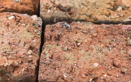 Old brick , texture macro Royalty Free Stock Photo