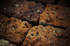 Old brick , texture macro Stock Image