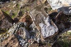 Old brick trashed. Brick on the pile of rubbish, partly dirty from cement. Still visible production year Royalty Free Stock Photo